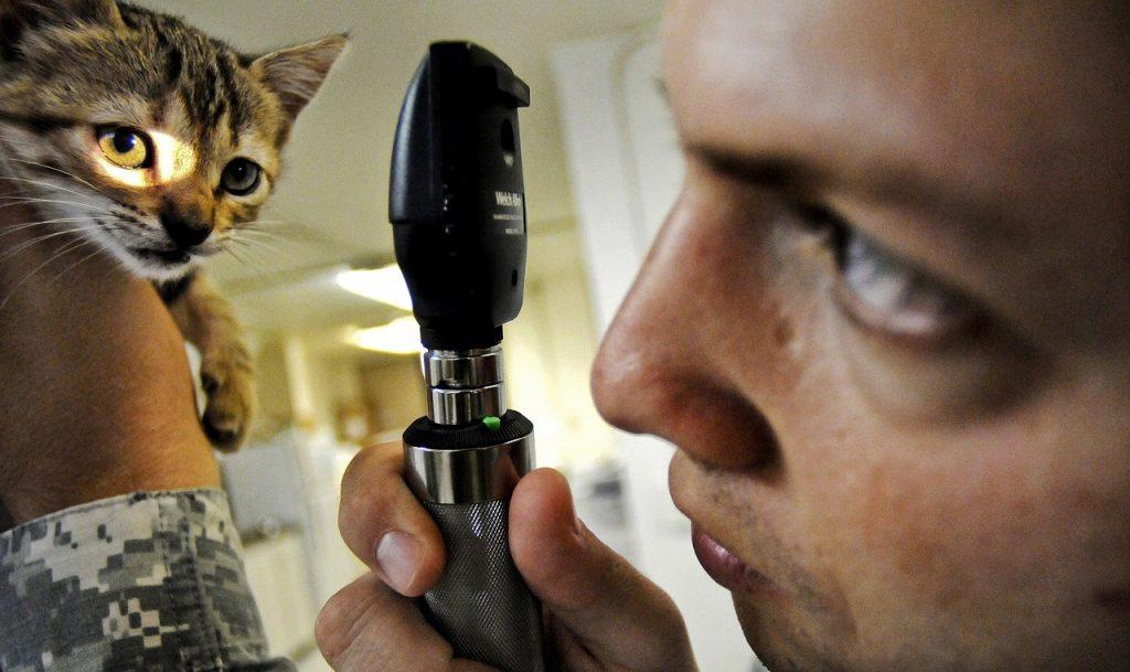 процедуры для лечения глаз