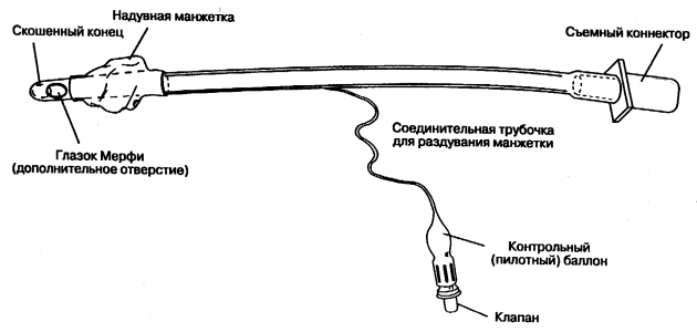 Схема интубационной трубки